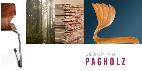 Learn on PAGHOLZ®